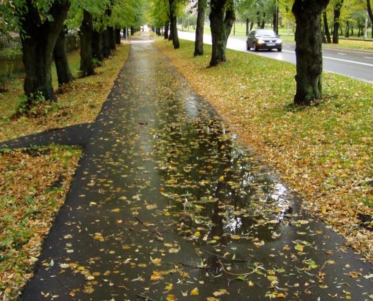 Tallinna Kopli tänava tee remont on vesiste loikudega kannatuste rada jalakäijatele, sest kehv kvaliteet tulenes tööde teostajast. Foto Virgo Kruve