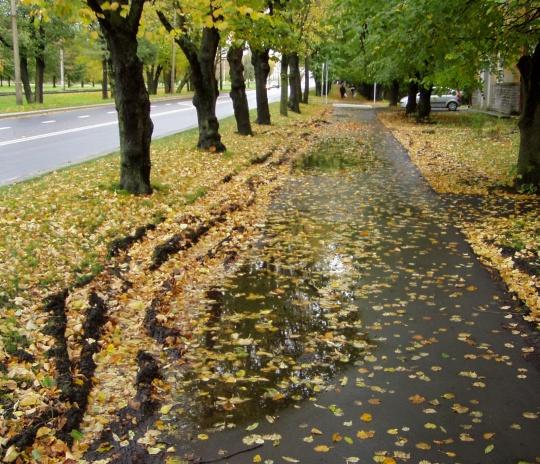 Kopli teeremont on poolik, tekkivad vihmavee loigud.